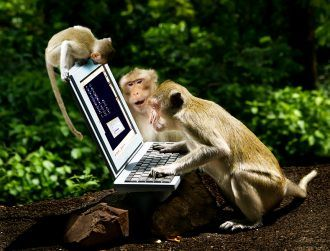Monkey writes Shakespeare using new brain-sensing technology