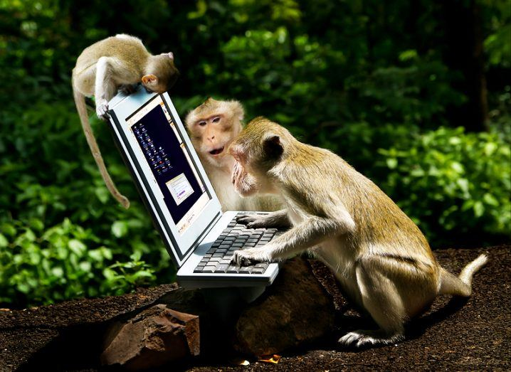 Shakespeare monkeys at computer