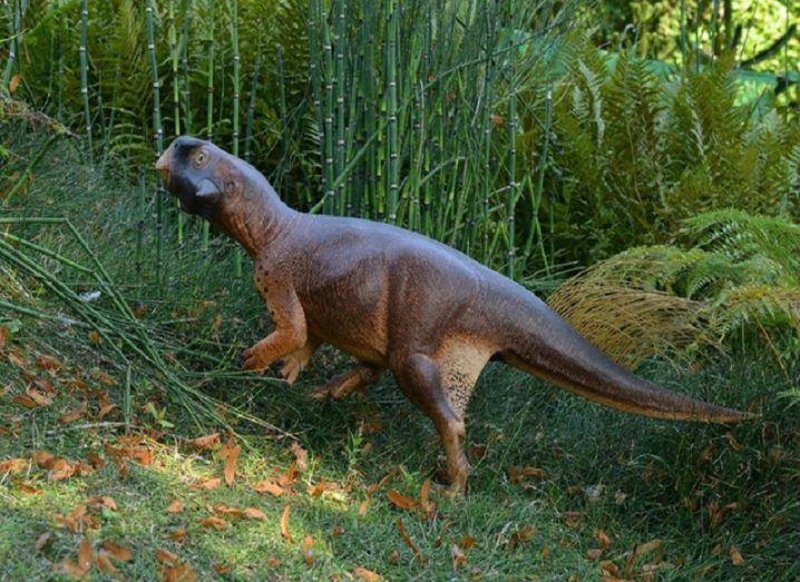 Fossil parrot lizard