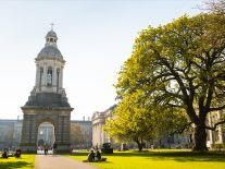 TCD data error sees college omitted from university rankings