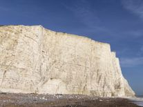 Are algae creating a new White Cliffs of Dover in Antarctica?
