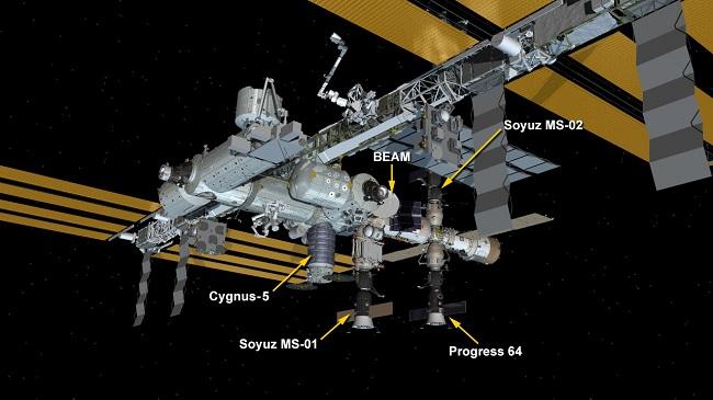 Cygnus capsule