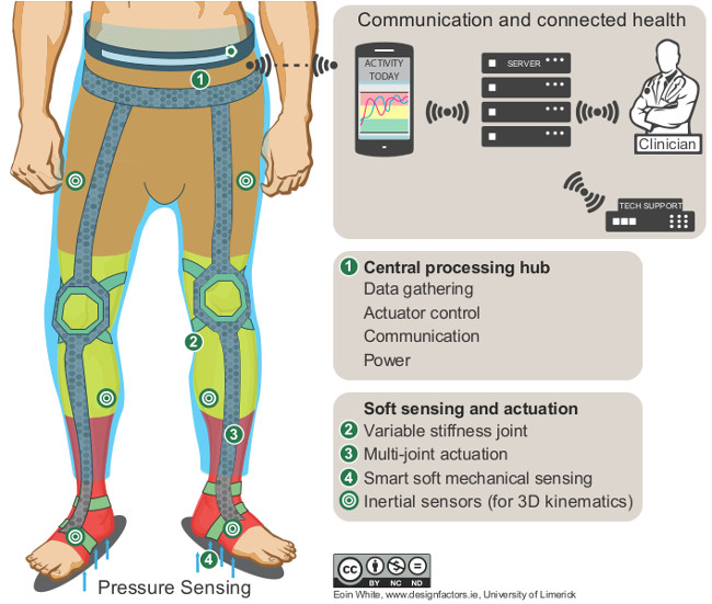 Graphic of exoskeleton. Image: Eoin White/Design Factors/UL