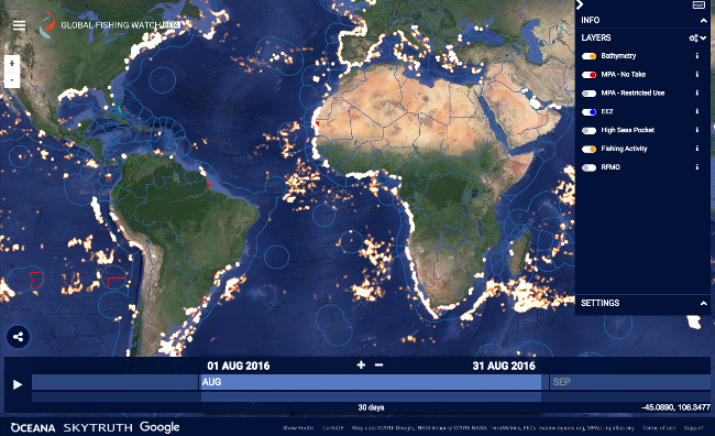 Interactive map shows over 35,000 fishing vessels at work on the world's oceans