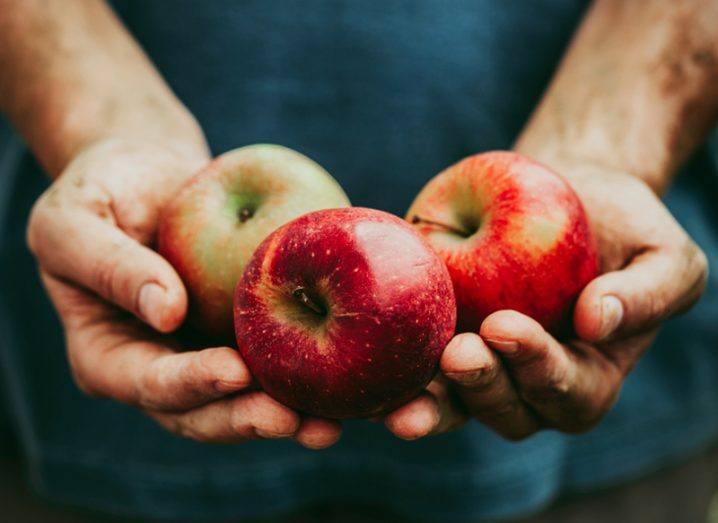 apple tax Ireland government
