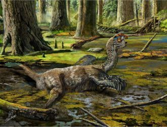 Chinese builders nearly destroy undiscovered 'mud dragon' dinosaur with dynamite