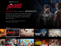 Want Netflix without internet? Just download your favourite show