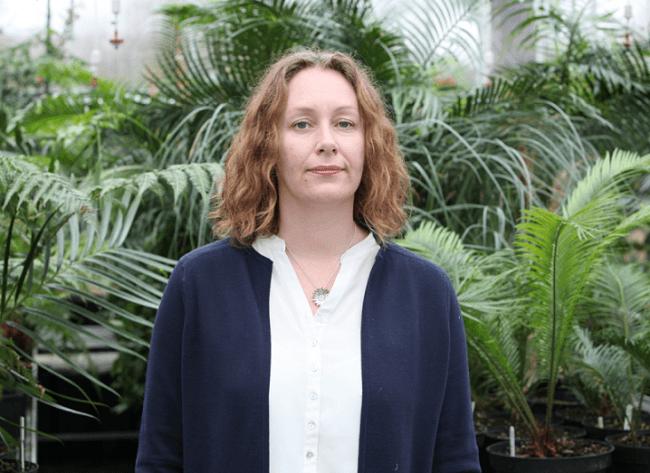 Jennifer McElwain, UCD