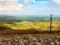 ComReg broadband figures tell a lamentable tale of two Irelands