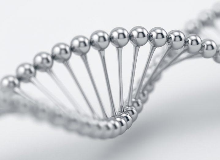 DNA silver nanowires