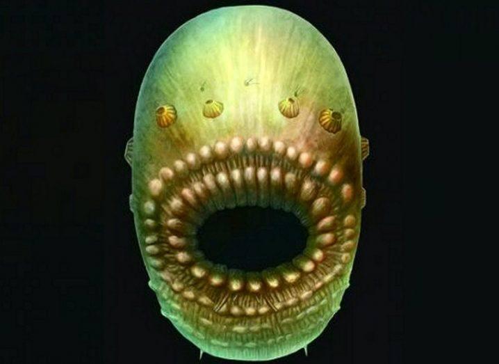 Ancestor creature