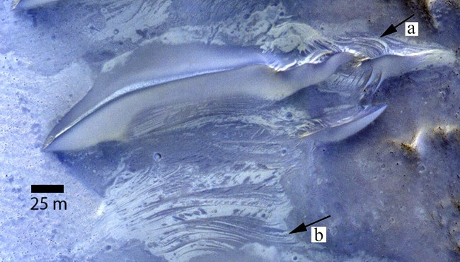 (a) Exposure of crossbeds on windward slope of dunes on Mars. (b) Interdune strata exposed in planform showing contrasting albedo and crosscutting relationships similar to that exposed in the dune.