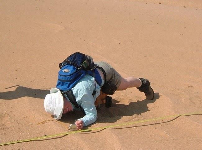 Prof Bourke examining ripples in the Namib Desert. Image via H. Viles