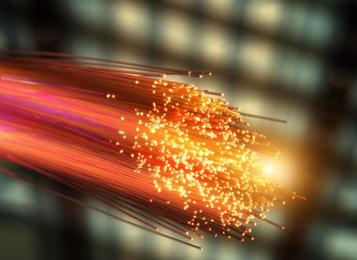 Networks: fibre