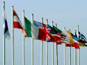 Cybersecurity: flags