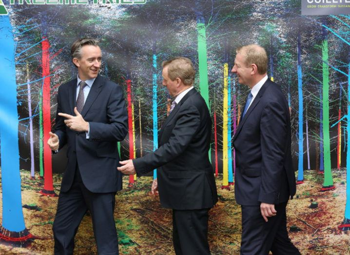 Branch networking: Treemetrics inks €1m deal with Coillte
