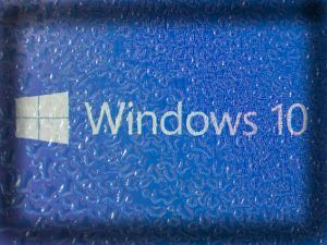 Windows 10. Image: Anton Watman/Shutterstock