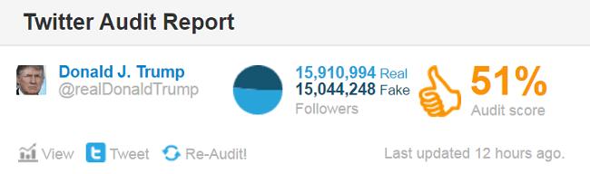 Twitter audit