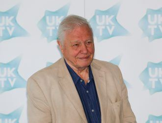 11 cool species named after the great David Attenborough