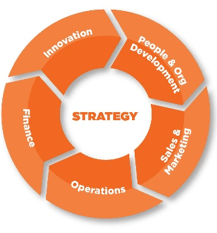 Enterprise Ireland's six pillars: strategy, operations, innovation, sales and marketing, finance, and people and management