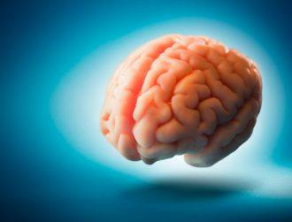 Citizen brain: How medtech is helping us keep our heads