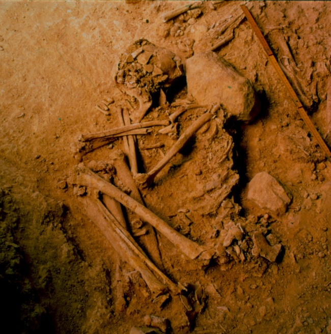 Archaeological remains of an individual from the Portuguese site of Hipogeu de Monte Canelas I. Image: Rui Parreira