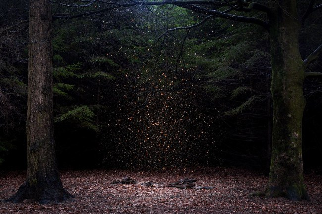 'Stars.' Image: Ellie Davies. Fine Art Single Image Winner, Magnum and LensCulture Photography Awards 2017.
