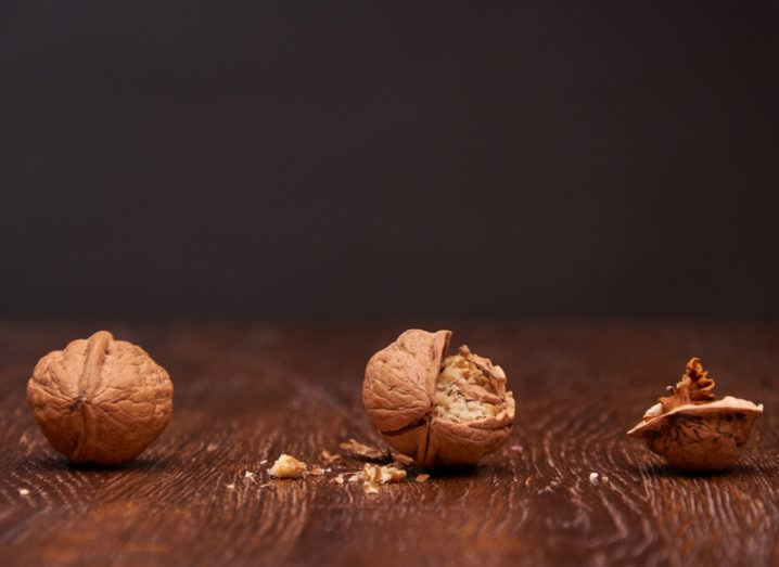 Walnuts degrading