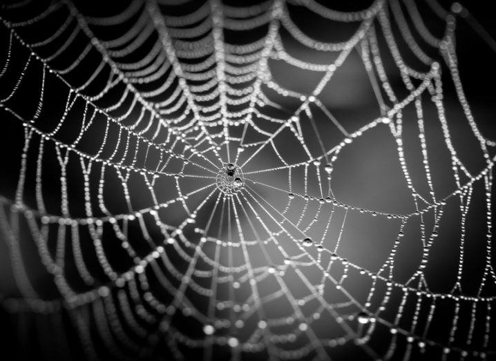 Dark web dragnet delivers destruction to AlphaBay and Hansa