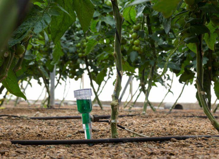 Farming sensor