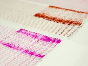 Seismograph readings