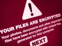 Irish SME Association calls to establish national cybercrime body