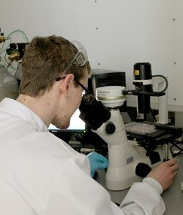 Inside the NICB lab. Image: DCU