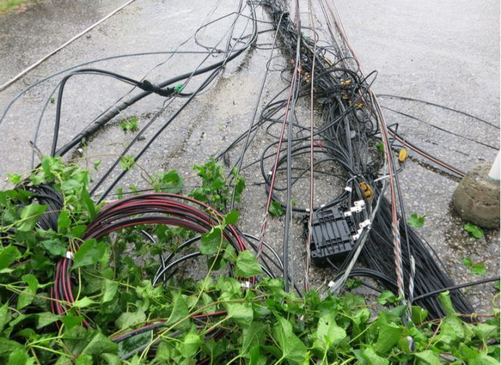 Storm Ophelia downed cables