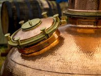 I'll drink to that: Meet the scientist cleaning up the act of Ireland's craft distilleries