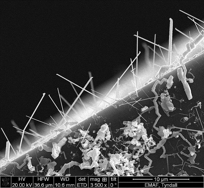 Germanium Telluride nanowires