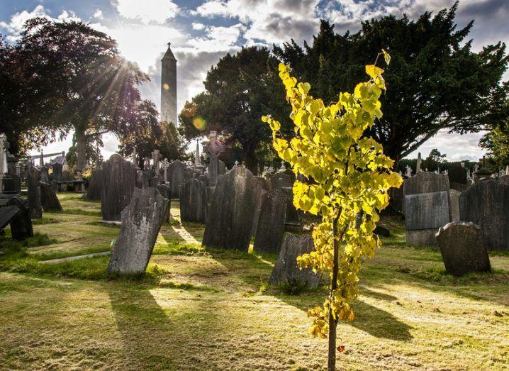 Glasnevin Cemetery Twitter defamation