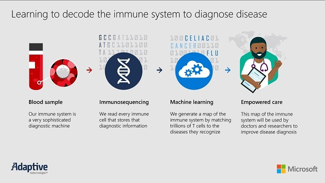 Microsoft partners with Adaptive Biotechnologies to decode human immune system using AI