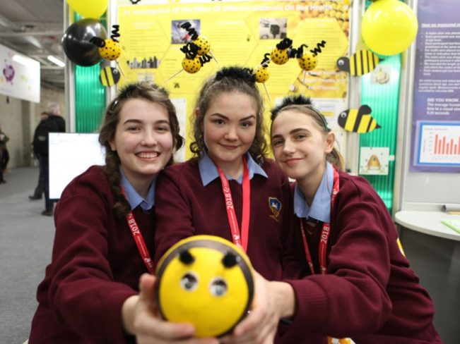 BTYSTE 2018 day 1: Positive thinking about robots, nature and lawnmowers