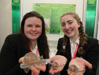 BT Young Scientist: Bitcoin, FOMO and sticky snail gel