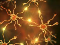 New discovery could radically change what we know about Alzheimer's