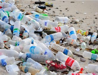 Mutant enzyme that eats plastic bottles could help end global crisis