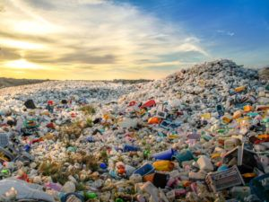 How plastic-eating bacteria actually work – a chemist explains