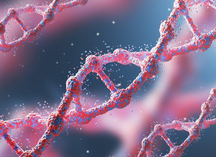 DNA chains