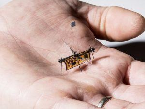Robot insect in palm of person's hand