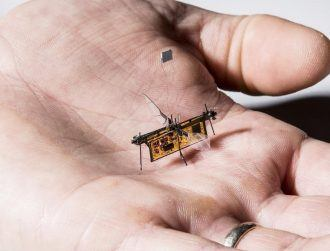 Check out this tiny flying robot taking off for the first time