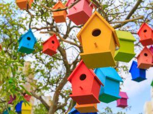lots of bird houses