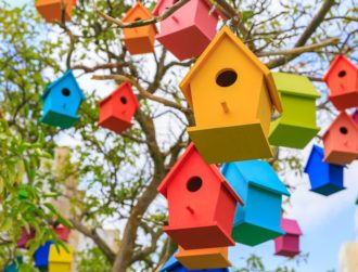 Big Bird is watching: Twitter pecks at trolls who spoil conversations