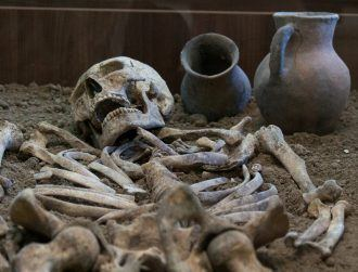 Carbon dating accuracy called into question after major flaw discovery