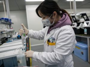 Researcher working at the Chinese national gene bank in Shenzhen, China